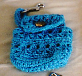 Small cellphone case 2