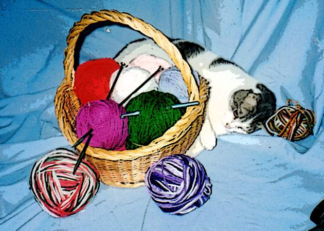 Basket of yarn with cat