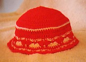 Ladies shell stitch hat